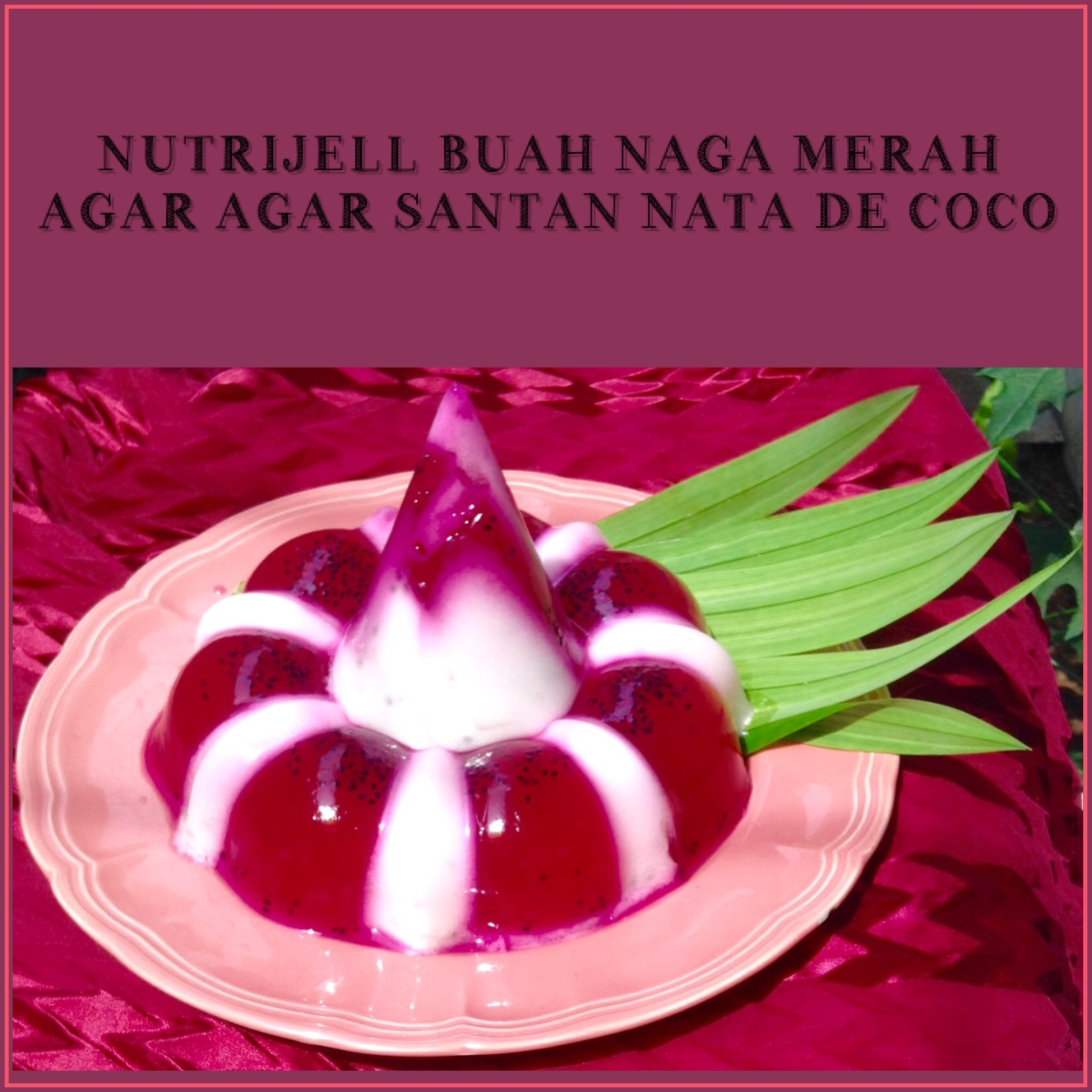 Resep Nutrijell Buah Naga Merah dan Agar Agar Santan Nata de Coco
