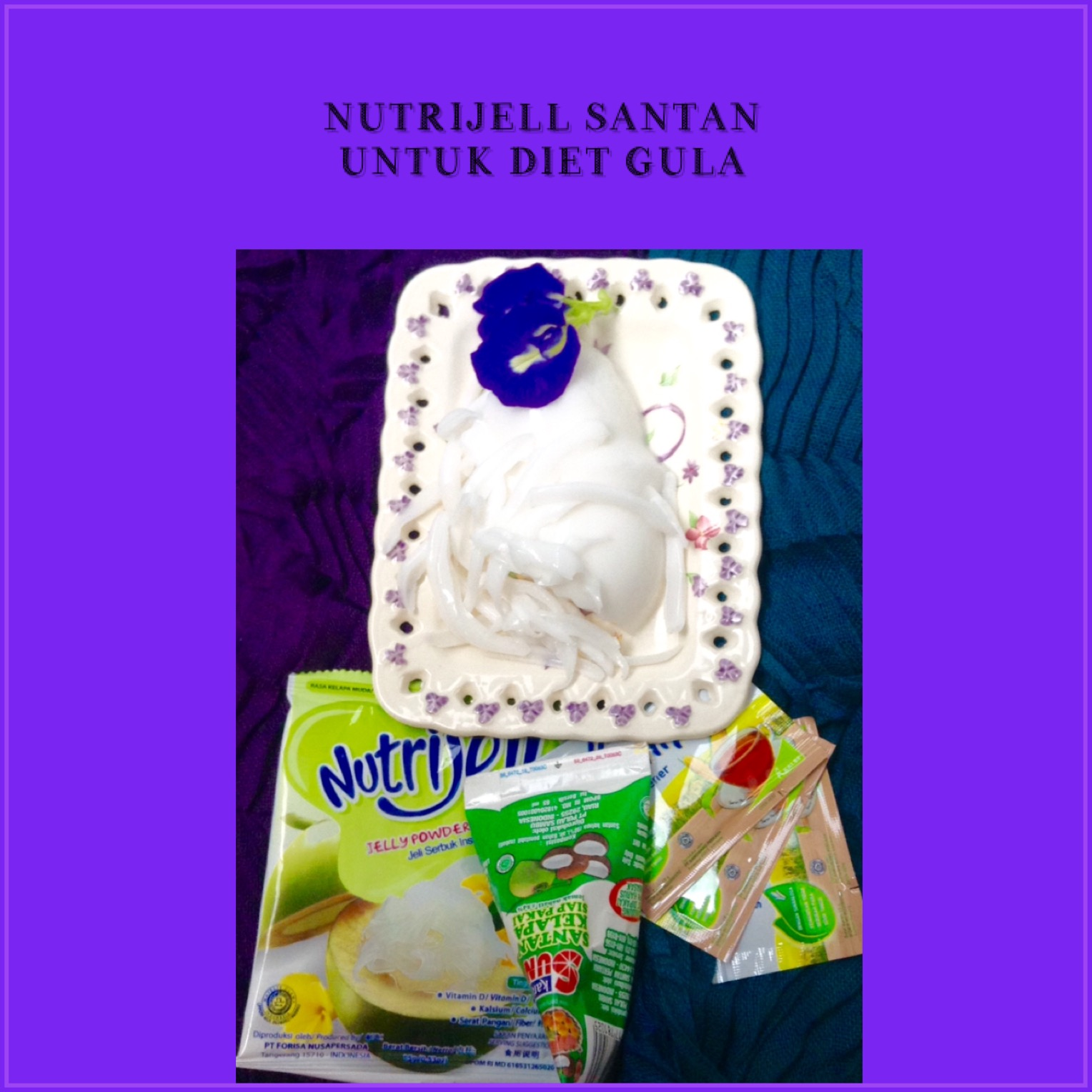Resep Nutrijell  Santan Kelapa Untuk Diet Gula