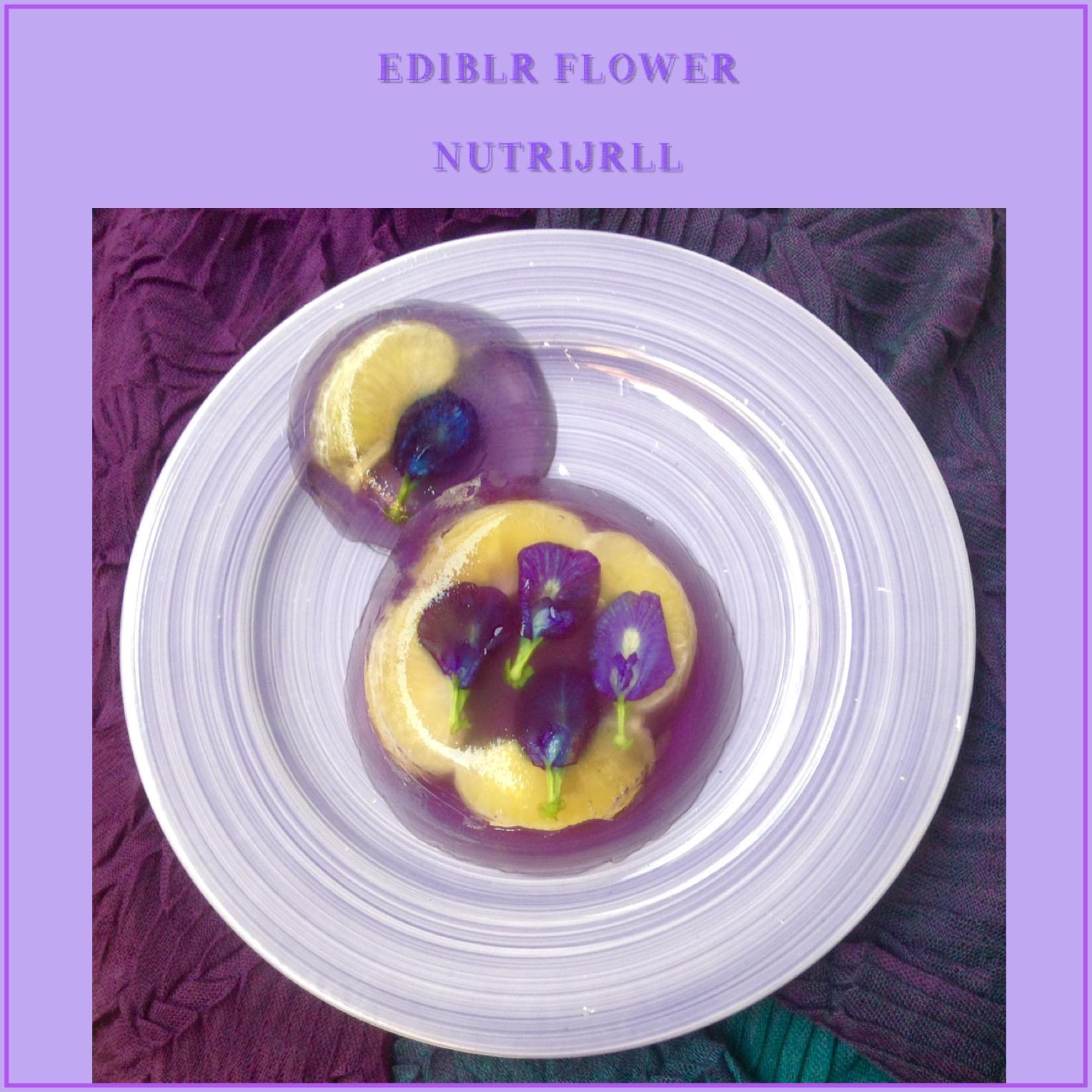 Resep Edible Flower Nutrijell