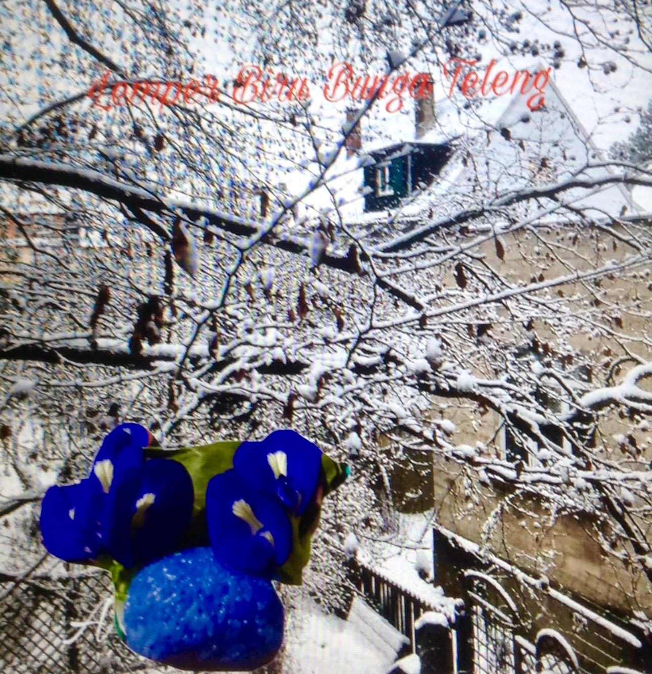 Resep Lemper Biru Bunga Teleng