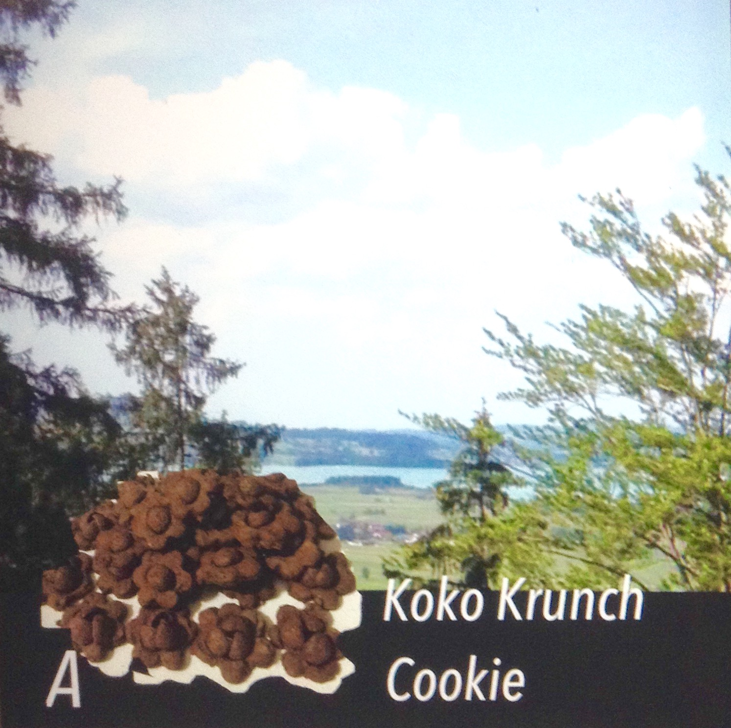 Resep Coco Crunch Cookie